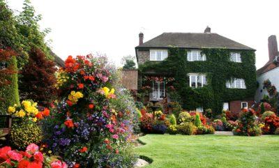 Британские и Азиатские сады