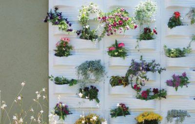 Цветочная стенка — украшение для сада